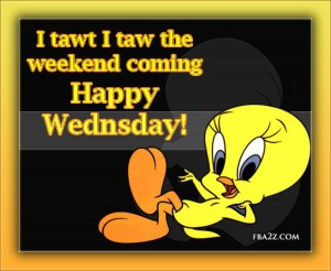 wednesday-humpday-hump-day-tweety-bird-cartoon-cute-adorable-fb-comment-graphics-pictures-photos